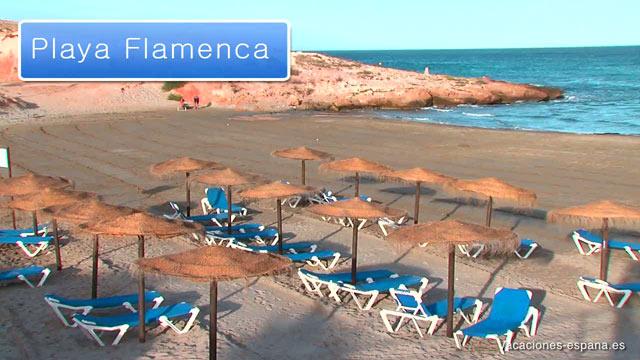 d49791999ca8e Guía de viaje de Playa Flamenca